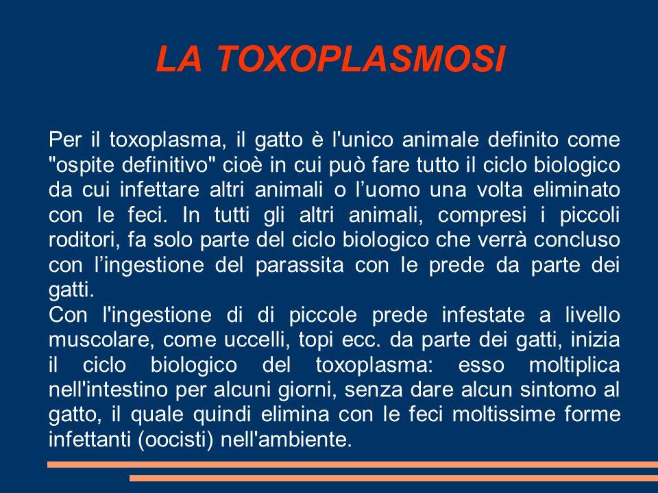 LA TOXOPLASMOSI Per il toxoplasma, il gatto è l'unico animale definito come