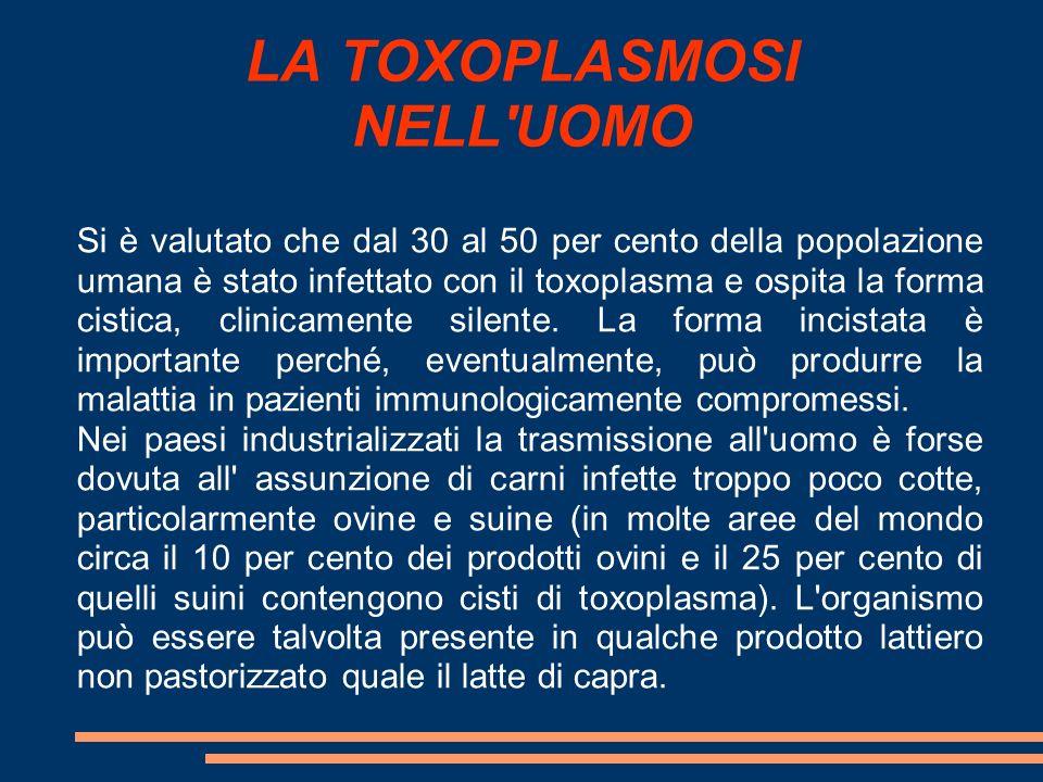 LA TOXOPLASMOSI NELL'UOMO Si è valutato che dal 30 al 50 per cento della popolazione umana è stato infettato con il toxoplasma e ospita la forma cisti