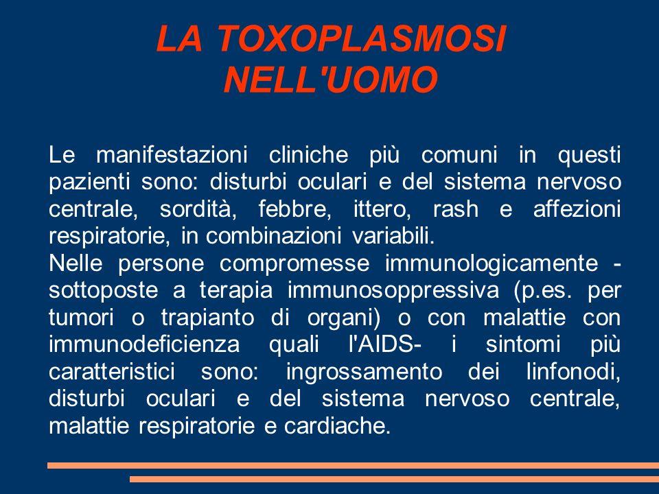 LA TOXOPLASMOSI NELL'UOMO Le manifestazioni cliniche più comuni in questi pazienti sono: disturbi oculari e del sistema nervoso centrale, sordità, feb