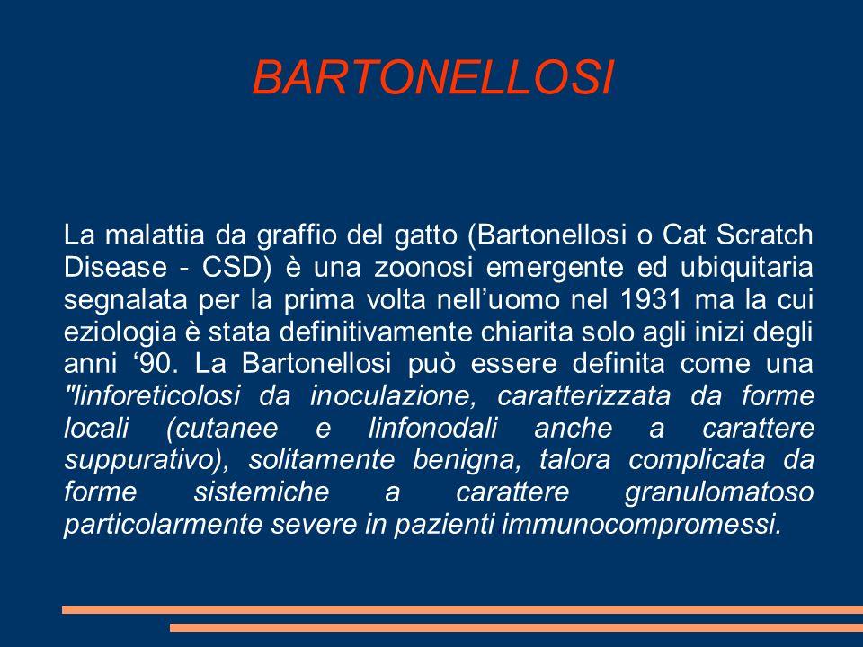 BARTONELLOSI La malattia da graffio del gatto (Bartonellosi o Cat Scratch Disease - CSD) è una zoonosi emergente ed ubiquitaria segnalata per la prima