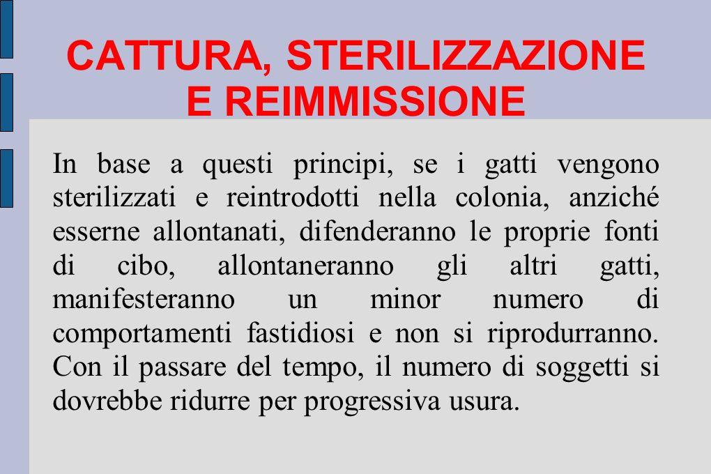 CATTURA, STERILIZZAZIONE E REIMMISSIONE In base a questi principi, se i gatti vengono sterilizzati e reintrodotti nella colonia, anziché esserne allon