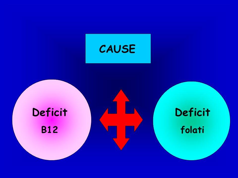CAUSE Deficit B12 Deficit folati