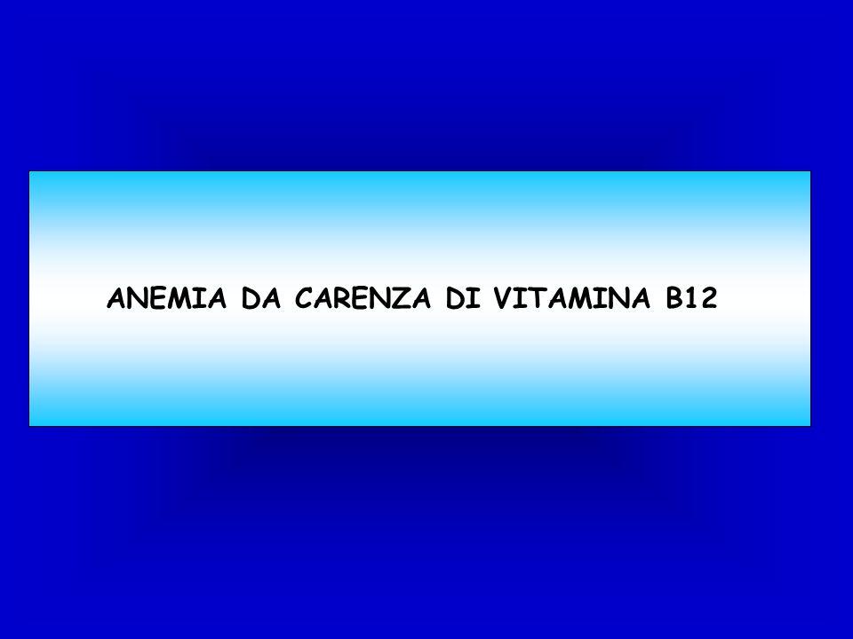 ANEMIA DA CARENZA DI VITAMINA B12