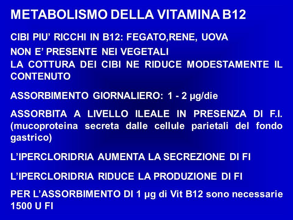 METABOLISMO DELLA VITAMINA B12 CIBI PIU RICCHI IN B12: FEGATO,RENE, UOVA NON E PRESENTE NEI VEGETALI LIPERCLORIDRIA AUMENTA LA SECREZIONE DI FI ASSORBIMENTO GIORNALIERO: 1 - 2 µg/die LA COTTURA DEI CIBI NE RIDUCE MODESTAMENTE IL CONTENUTO ASSORBITA A LIVELLO ILEALE IN PRESENZA DI F.I.
