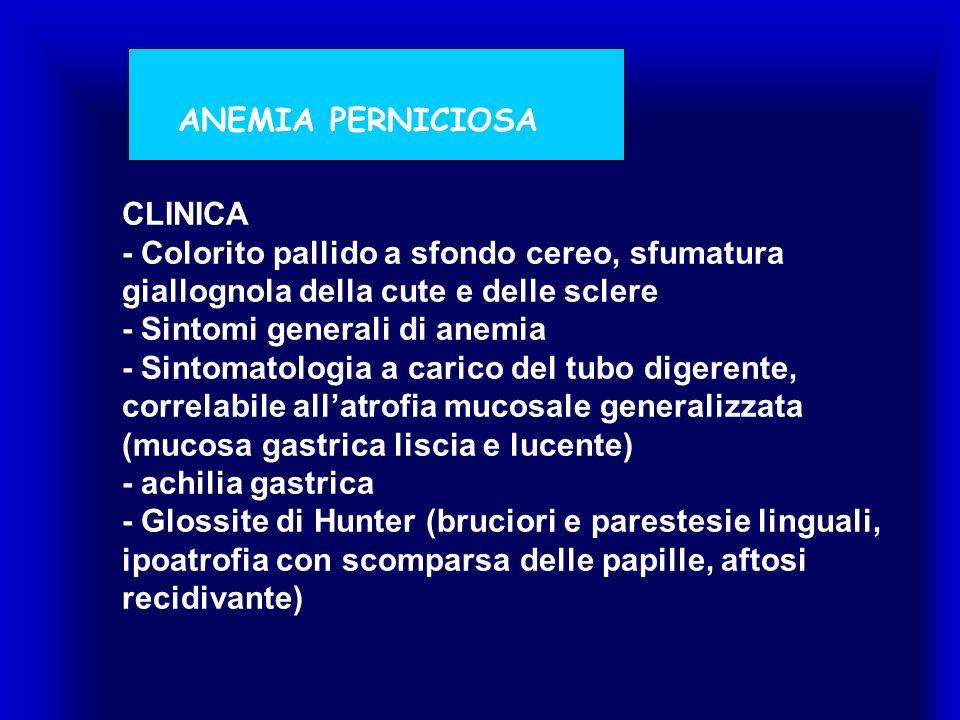 CLINICA - Colorito pallido a sfondo cereo, sfumatura giallognola della cute e delle sclere - Sintomi generali di anemia - Sintomatologia a carico del tubo digerente, correlabile allatrofia mucosale generalizzata (mucosa gastrica liscia e lucente) - achilia gastrica - Glossite di Hunter (bruciori e parestesie linguali, ipoatrofia con scomparsa delle papille, aftosi recidivante) ANEMIA PERNICIOSA