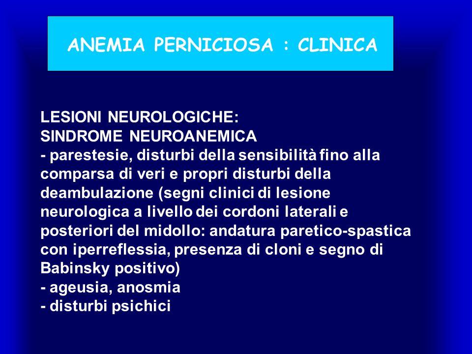 LESIONI NEUROLOGICHE: SINDROME NEUROANEMICA - parestesie, disturbi della sensibilità fino alla comparsa di veri e propri disturbi della deambulazione (segni clinici di lesione neurologica a livello dei cordoni laterali e posteriori del midollo: andatura paretico-spastica con iperreflessia, presenza di cloni e segno di Babinsky positivo) - ageusia, anosmia - disturbi psichici ANEMIA PERNICIOSA : CLINICA