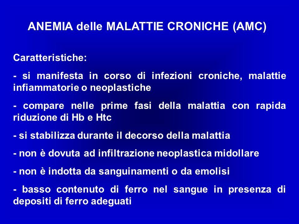 ANEMIA delle MALATTIE CRONICHE (AMC) Caratteristiche: - si manifesta in corso di infezioni croniche, malattie infiammatorie o neoplastiche - compare n