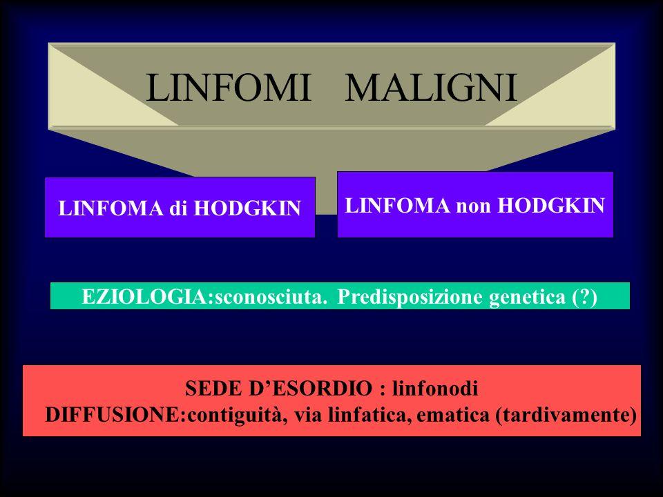 LINFOMA di HODGKIN Linfoma maligno caratterizzato dalla proliferazione di cellule neoplastiche,cellule di Reed Sternberg e varianti, associate ad una componente cellulare, spesso polimorfa, di tipo reattivo.
