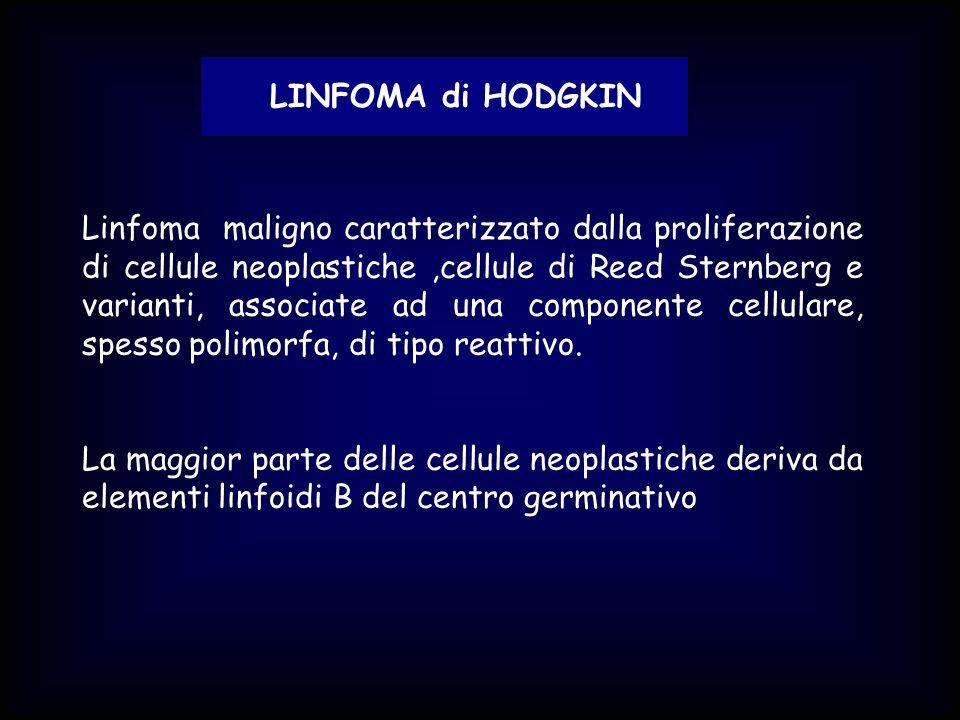 LINFOMA di HODGKIN CLINICA: -interessa tutte le età, frequenza massima 15-30 anni -più colpito il sesso maschile -tumefazione linfonodale.