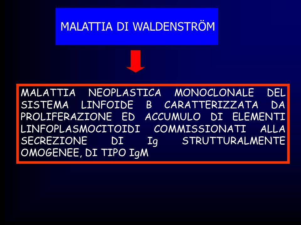 MALATTIA DI WALDENSTRÖM MALATTIA NEOPLASTICA MONOCLONALE DEL SISTEMA LINFOIDE B CARATTERIZZATA DA PROLIFERAZIONE ED ACCUMULO DI ELEMENTI LINFOPLASMOCI