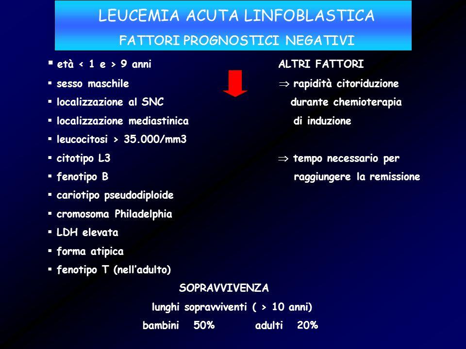 LEUCEMIA ACUTA LINFOBLASTICA FATTORI PROGNOSTICI NEGATIVI età 9 anni ALTRI FATTORI sesso maschile rapidità citoriduzione localizzazione al SNC durante