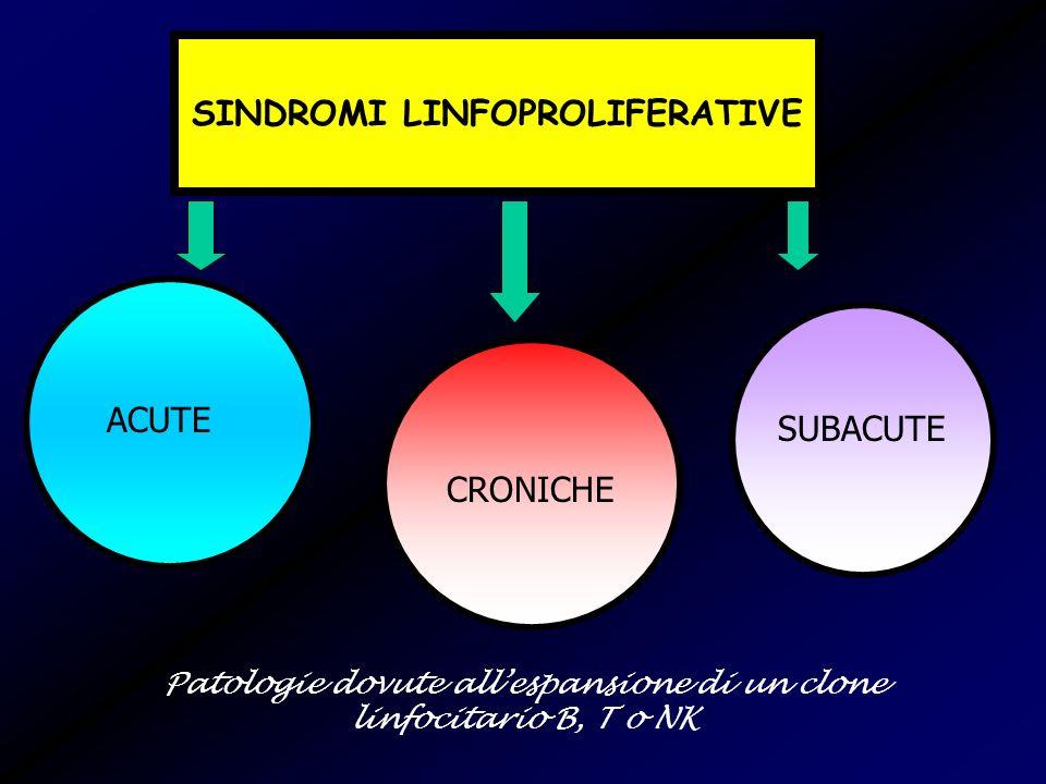 SINDROMI LINFOPROLIFERATIVE ACUTE LEUCEMIA ACUTA LINFOBLASTICA (B, T) LINFOMA LINFOBLASTICO (B, T) LINFOMA DI BURKITT (B) LINFOMA IMMUNOBLASTICO (B,T) LINFOMA CENTROBLASTICO (B) LINFOMA A GRANDI CELLULE ANAPLASTICHE (B, T) LINFOMA A CELLULE T PERIFERICHE POLIMORFE MEDIE/GRANDI LINFOMA LINFOEPITELIOIDE (T) LINFOMA SIMIL- ANGIOIMMUNOBLASTICO (T)