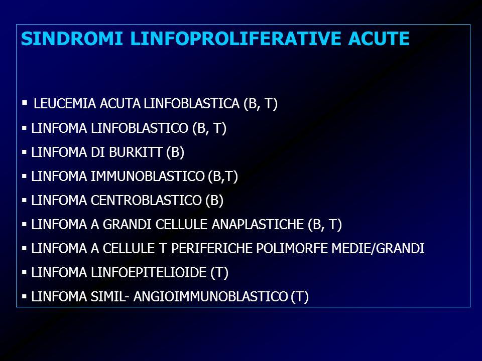 SINDROMI LINFOPROLIFERATIVE ACUTE LEUCEMIA ACUTA LINFOBLASTICA (B, T) LINFOMA LINFOBLASTICO (B, T) LINFOMA DI BURKITT (B) LINFOMA IMMUNOBLASTICO (B,T)