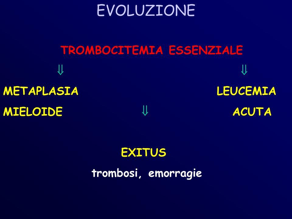 EVOLUZIONE TROMBOCITEMIA ESSENZIALE METAPLASIA LEUCEMIA MIELOIDE ACUTA EXITUS trombosi, emorragie
