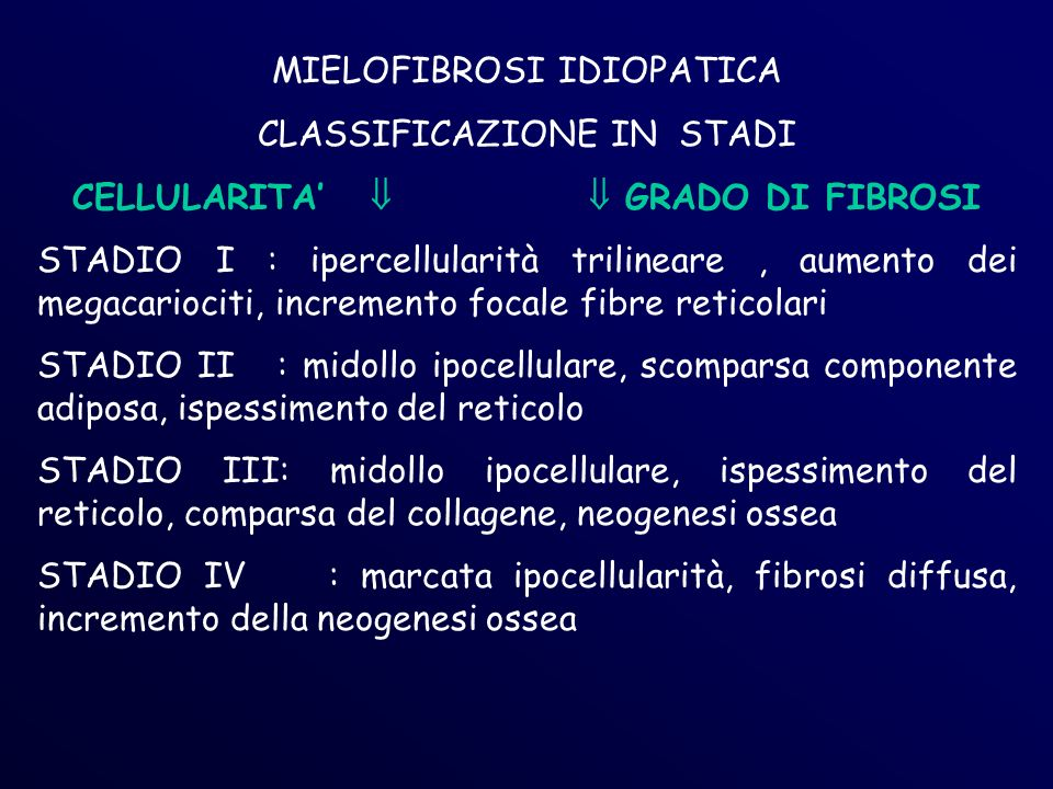 MIELOFIBROSI IDIOPATICA CLASSIFICAZIONE IN STADI CELLULARITA GRADO DI FIBROSI STADIO I : ipercellularità trilineare, aumento dei megacariociti, incremento focale fibre reticolari STADIO II : midollo ipocellulare, scomparsa componente adiposa, ispessimento del reticolo STADIO III: midollo ipocellulare, ispessimento del reticolo, comparsa del collagene, neogenesi ossea STADIO IV : marcata ipocellularità, fibrosi diffusa, incremento della neogenesi ossea