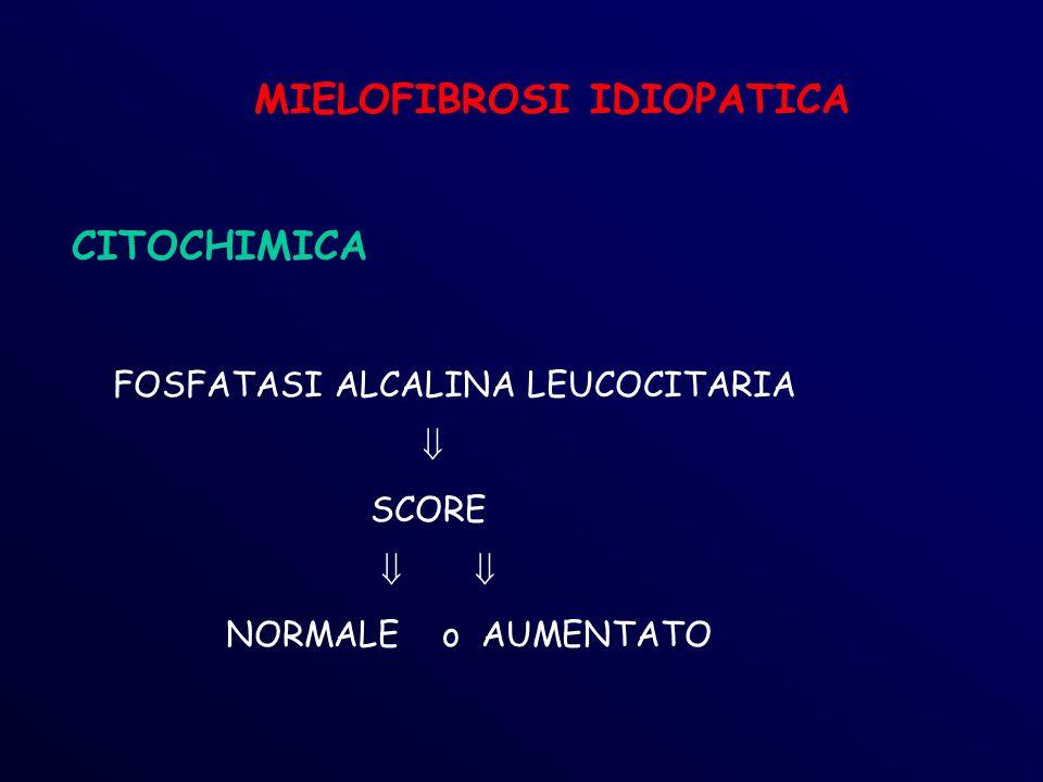 MIELOFIBROSI IDIOPATICA CITOCHIMICA FOSFATASI ALCALINA LEUCOCITARIA SCORE NORMALE o AUMENTATO