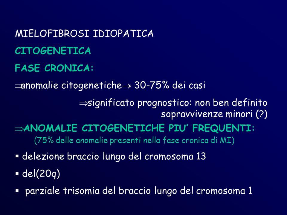 MIELOFIBROSI IDIOPATICA CITOGENETICA FASE CRONICA: anomalie citogenetiche 30-75% dei casi significato prognostico: non ben definito sopravvivenze minori (?) ANOMALIE CITOGENETICHE PIU FREQUENTI: (75% delle anomalie presenti nella fase cronica di MI) delezione braccio lungo del cromosoma 13 del(20q) parziale trisomia del braccio lungo del cromosoma 1