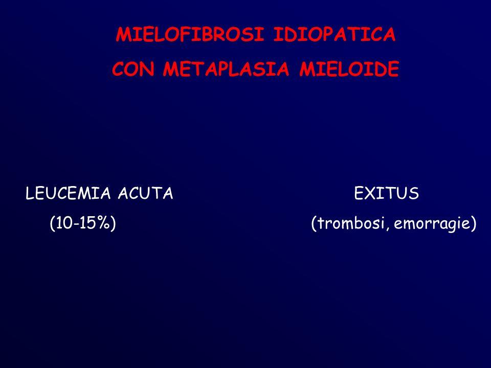 MIELOFIBROSI IDIOPATICA CON METAPLASIA MIELOIDE LEUCEMIA ACUTA EXITUS (10-15%) (trombosi, emorragie)