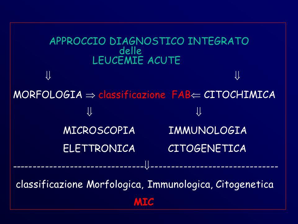 APPROCCIO DIAGNOSTICO INTEGRATO delle LEUCEMIE ACUTE MORFOLOGIA classificazione FAB CITOCHIMICA MICROSCOPIA IMMUNOLOGIA ELETTRONICA CITOGENETICA -------------------------------- ------------------------------- classificazione Morfologica, Immunologica, Citogenetica MIC