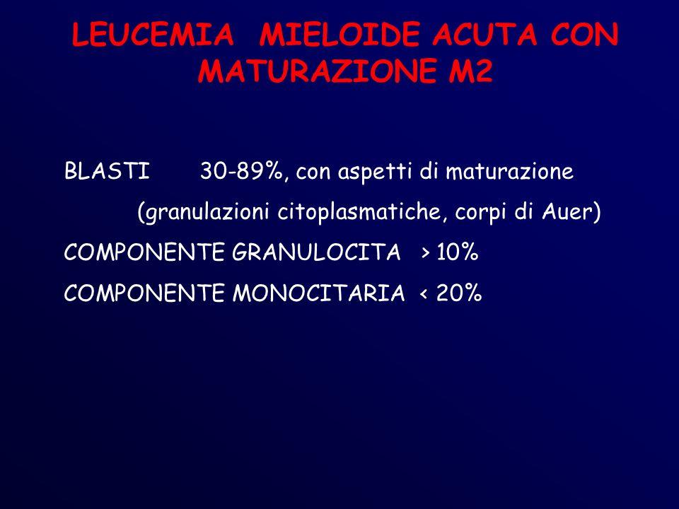 LEUCEMIA MIELOIDE ACUTA CON MATURAZIONE M2 BLASTI30-89%, con aspetti di maturazione (granulazioni citoplasmatiche, corpi di Auer) COMPONENTE GRANULOCITA > 10% COMPONENTE MONOCITARIA < 20%