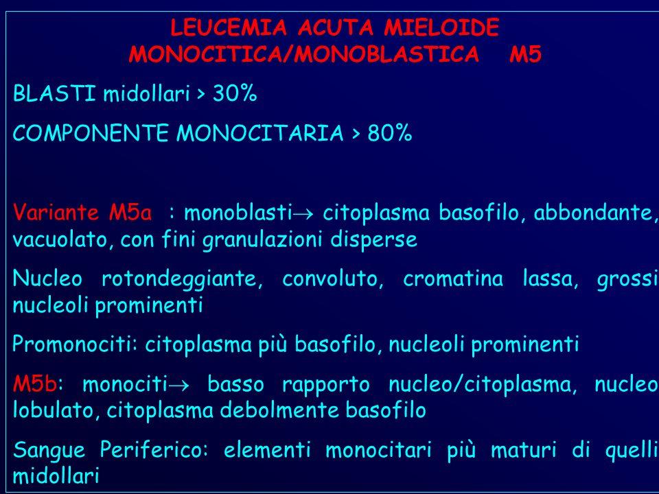 LEUCEMIA ACUTA MIELOIDE MONOCITICA/MONOBLASTICA M5 BLASTI midollari > 30% COMPONENTE MONOCITARIA > 80% Variante M5a : monoblasti citoplasma basofilo, abbondante, vacuolato, con fini granulazioni disperse Nucleo rotondeggiante, convoluto, cromatina lassa, grossi nucleoli prominenti Promonociti: citoplasma più basofilo, nucleoli prominenti M5b: monociti basso rapporto nucleo/citoplasma, nucleo lobulato, citoplasma debolmente basofilo Sangue Periferico: elementi monocitari più maturi di quelli midollari