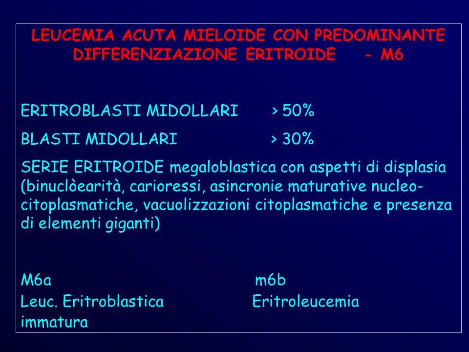 LEUCEMIA ACUTA MIELOIDE CON PREDOMINANTE DIFFERENZIAZIONE ERITROIDE - M6 ERITROBLASTI MIDOLLARI > 50% BLASTI MIDOLLARI > 30% SERIE ERITROIDE megaloblastica con aspetti di displasia (binuclòearità, carioressi, asincronie maturative nucleo- citoplasmatiche, vacuolizzazioni citoplasmatiche e presenza di elementi giganti) M6am6b Leuc.