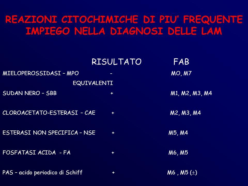 REAZIONI CITOCHIMICHE DI PIU FREQUENTE IMPIEGO NELLA DIAGNOSI DELLE LAM RISULTATO FAB MIELOPEROSSIDASI – MPO - MO, M7 EQUIVALENTI SUDAN NERO – SBB + M1, M2, M3, M4 CLOROACETATO-ESTERASI – CAE + M2, M3, M4 ESTERASI NON SPECIFICA – NSE + M5, M4 FOSFATASI ACIDA - FA + M6, M5 PAS – acido periodico di Schiff + M6, M5 ( )