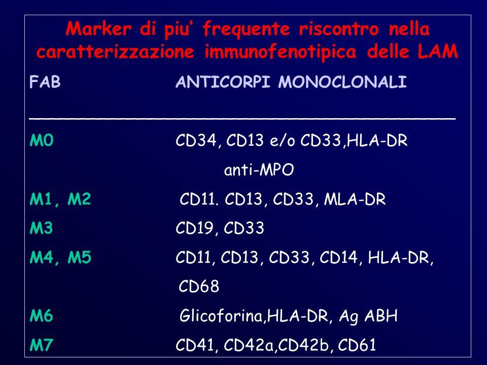Marker di piu frequente riscontro nella caratterizzazione immunofenotipica delle LAM FAB ANTICORPI MONOCLONALI __________________________________________ M0CD34, CD13 e/o CD33,HLA-DR anti-MPO M1, M2 CD11.