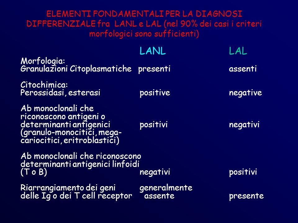 ELEMENTI FONDAMENTALI PER LA DIAGNOSI DIFFERENZIALE fra LANL e LAL (nel 90% dei casi i criteri morfologici sono sufficienti) LANLLAL Morfologia: Granulazioni Citoplasmatiche presentiassenti Citochimica: Perossidasi, esterasipositivenegative Ab monoclonali che riconoscono antigeni o determinanti antigenici positivinegativi (granulo-monocitici, mega- cariocitici, eritroblastici) Ab monoclonali che riconoscono determinanti antigenici linfoidi (T o B)negativipositivi Riarrangiamento dei genigeneralmente delle Ig o dei T cell receptor assentepresente