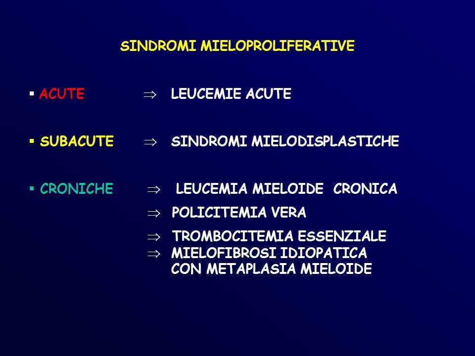 MIDOLLO OSSEO PV Fase iniziale:cellularita aumentata senza grossolane anomalie maturative e diminuzione della componente adiposa Fasi avanzate: incremento fibrosi midollare simile, per linsufficienza midollare, alla mielofibrosi idiopatica, con metaplasia mieloide epatica e splenica, citopenia, anisopoichilocitosi delle emazie, incremento della quota blastica Fase terminale: evoluzione in leucemia acuta mieloide (soprattutto nei pazienti trattati con chemioterapia o con P 32 )