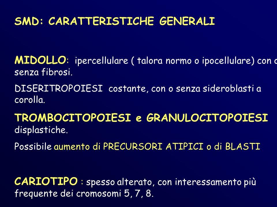 SMD: CARATTERISTICHE GENERALI MIDOLLO : ipercellulare ( talora normo o ipocellulare) con o senza fibrosi.
