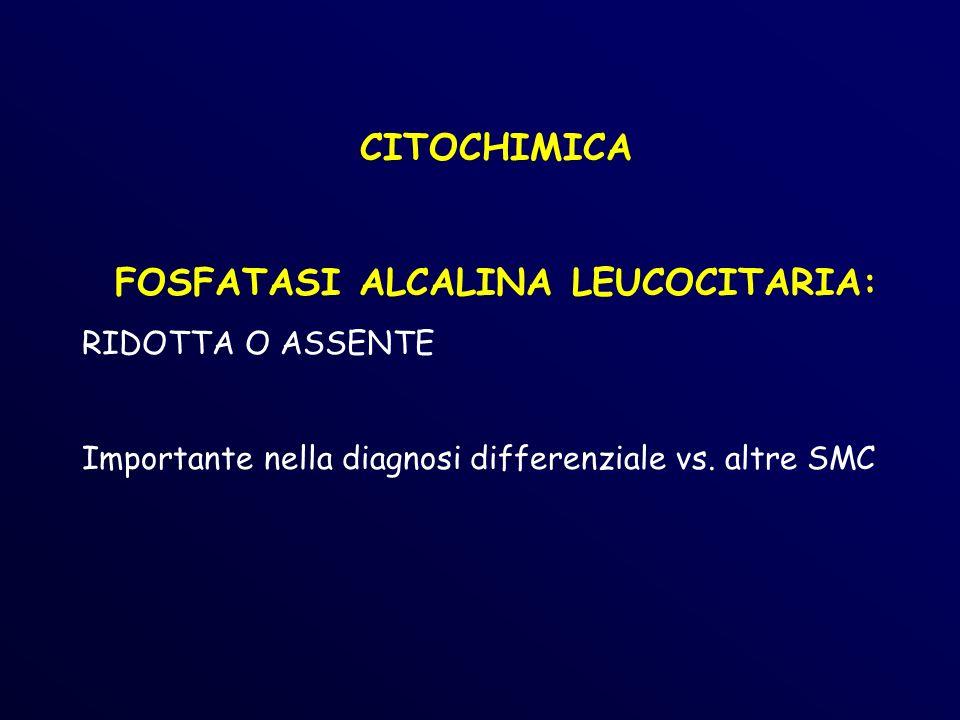 CITOCHIMICA FOSFATASI ALCALINA LEUCOCITARIA: RIDOTTA O ASSENTE Importante nella diagnosi differenziale vs.