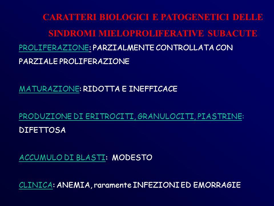 CARATTERI BIOLOGICI E PATOGENETICI DELLE SINDROMI MIELOPROLIFERATIVE SUBACUTE PROLIFERAZIONE: PARZIALMENTE CONTROLLATA CON PARZIALE PROLIFERAZIONE MATURAZIONE: RIDOTTA E INEFFICACE PRODUZIONE DI ERITROCITI, GRANULOCITI, PIASTRINE: DIFETTOSA ACCUMULO DI BLASTI: MODESTO CLINICA: ANEMIA, raramente INFEZIONI ED EMORRAGIE