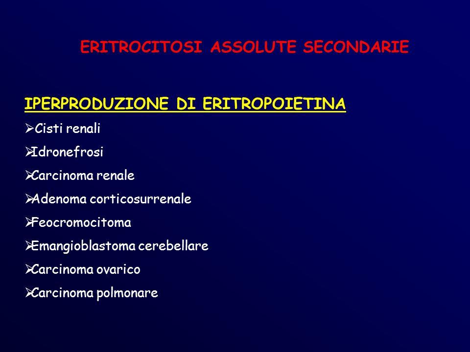 ERITROCITOSI ASSOLUTE SECONDARIE IPERPRODUZIONE DI ERITROPOIETINA Cisti renali Idronefrosi Carcinoma renale Adenoma corticosurrenale Feocromocitoma Emangioblastoma cerebellare Carcinoma ovarico Carcinoma polmonare