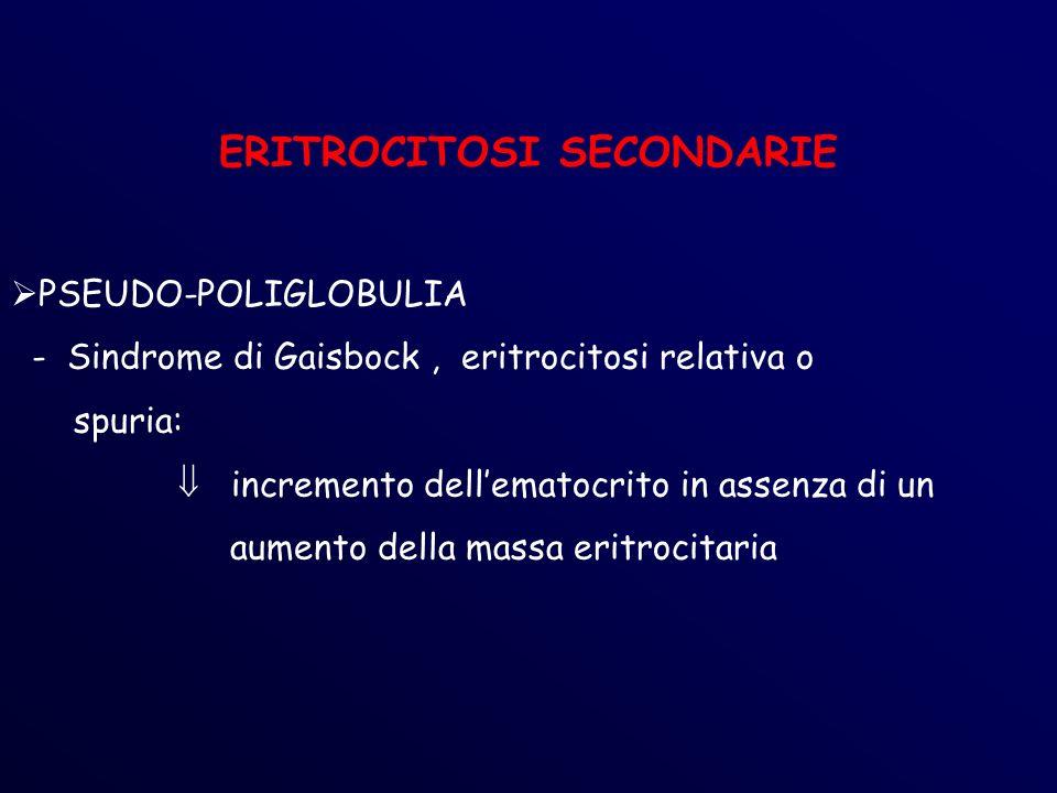 ERITROCITOSI SECONDARIE PSEUDO-POLIGLOBULIA - Sindrome di Gaisbock, eritrocitosi relativa o spuria: incremento dellematocrito in assenza di un aumento della massa eritrocitaria