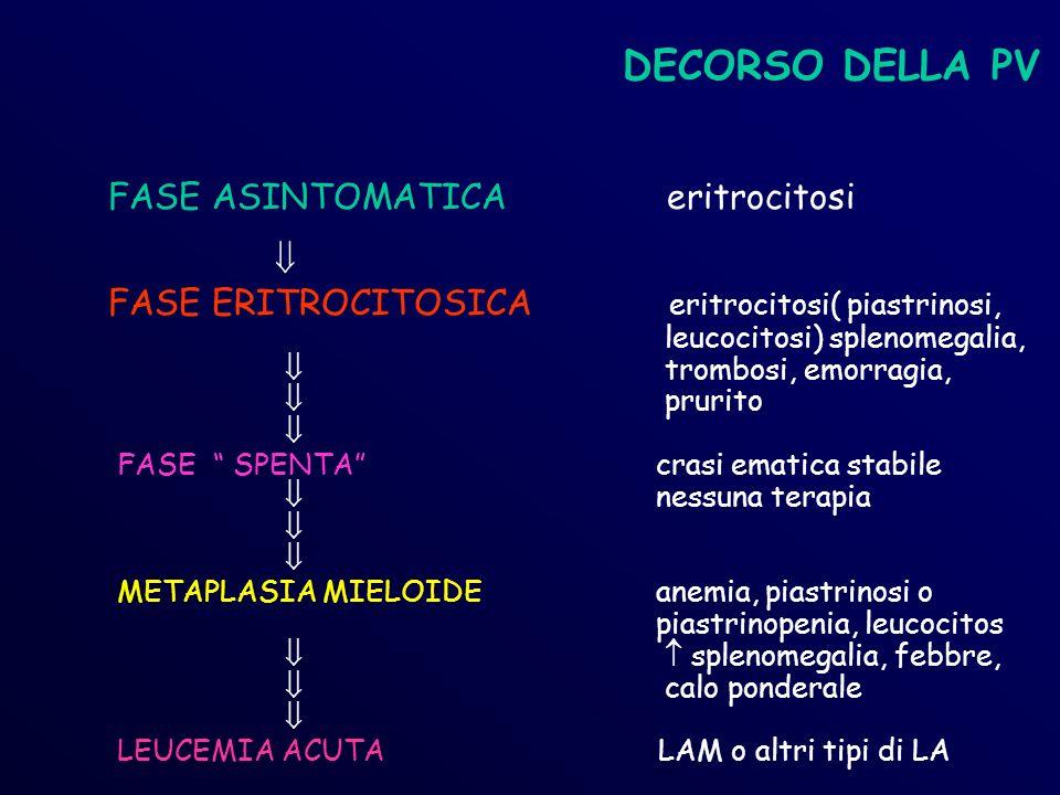 DECORSO DELLA PV FASE ASINTOMATICA eritrocitosi FASE ERITROCITOSICA eritrocitosi( piastrinosi, leucocitosi) splenomegalia, trombosi, emorragia, prurito FASE SPENTA crasi ematica stabile nessuna terapia METAPLASIA MIELOIDE anemia, piastrinosi o piastrinopenia, leucocitos splenomegalia, febbre, calo ponderale LEUCEMIA ACUTA LAM o altri tipi di LA