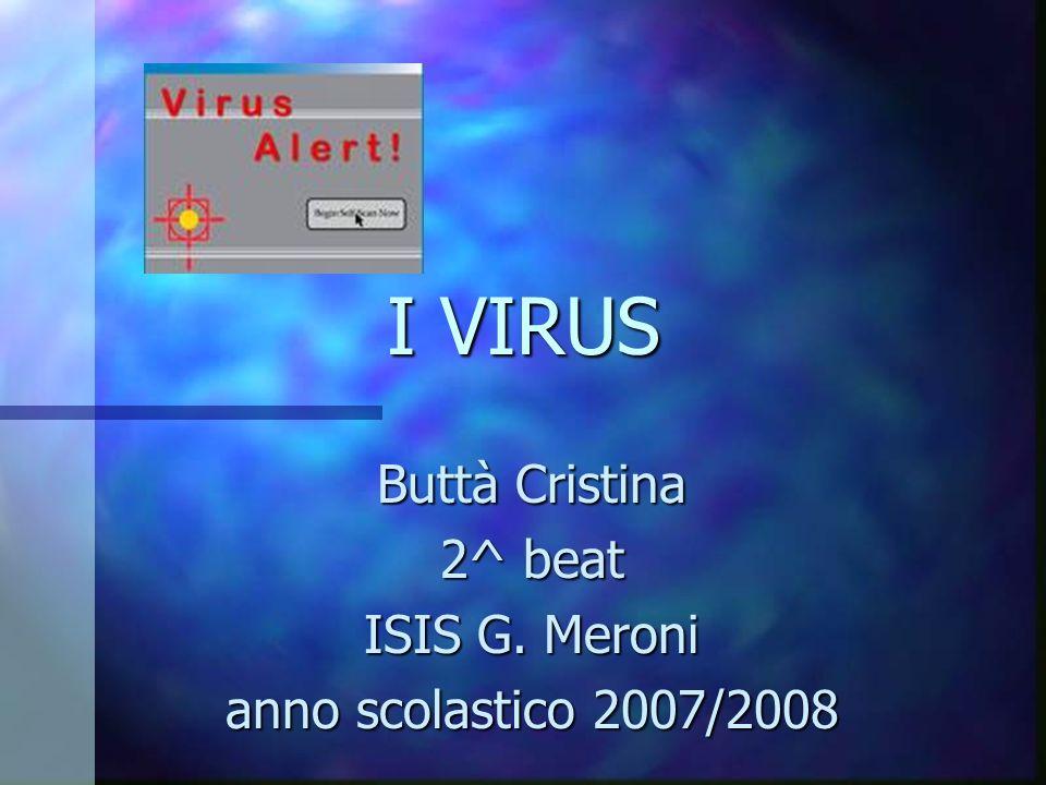 I VIRUS Buttà Cristina 2^ beat ISIS G. Meroni anno scolastico 2007/2008
