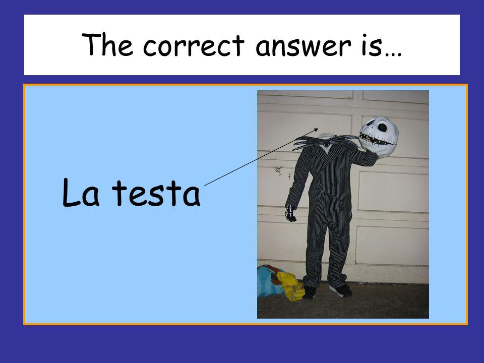 The correct answer is… La testa