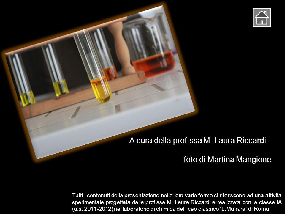 A cura della prof.ssa M. Laura Riccardi foto di Martina Mangione Tutti i contenuti della presentazione nelle loro varie forme si riferiscono ad una at