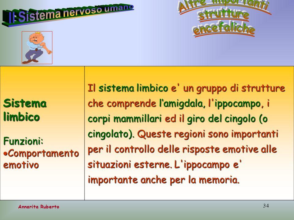 34 Annarita Ruberto Sistema limbico Funzioni: Comportamento emotivo Comportamento emotivo Il sistema limbico e' un gruppo di strutture che comprende l