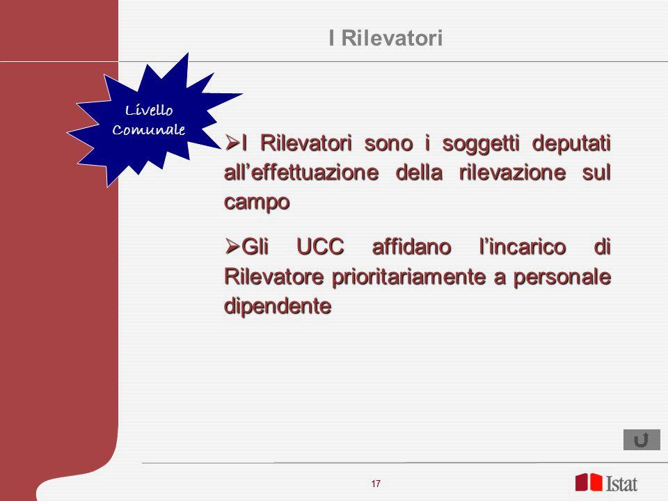 17 I Rilevatori sono i soggetti deputati alleffettuazione della rilevazione sul campo I Rilevatori sono i soggetti deputati alleffettuazione della ril