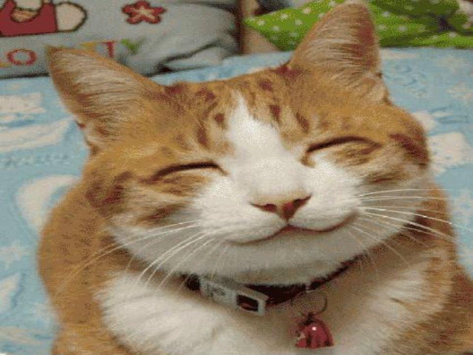 Avete sorriso oggi??? E facile.. Dovete solo alzare gli angoli della bocca verso lalto Ora ve lo mostro