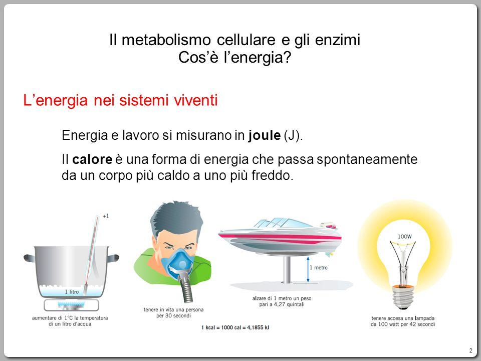 2 Lenergia nei sistemi viventi Energia e lavoro si misurano in joule (J).