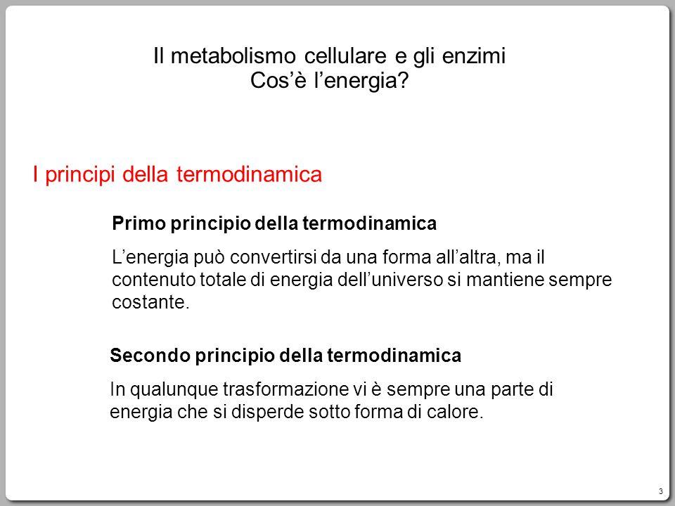 3 I principi della termodinamica Primo principio della termodinamica Lenergia può convertirsi da una forma allaltra, ma il contenuto totale di energia delluniverso si mantiene sempre costante.