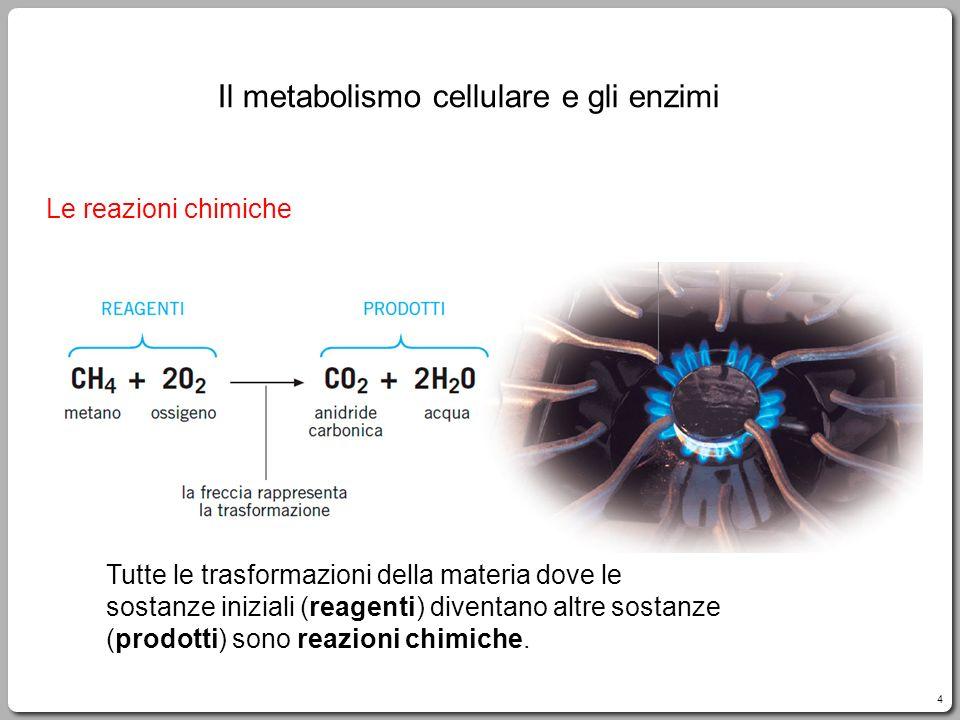 4 Le reazioni chimiche Tutte le trasformazioni della materia dove le sostanze iniziali (reagenti) diventano altre sostanze (prodotti) sono reazioni chimiche.