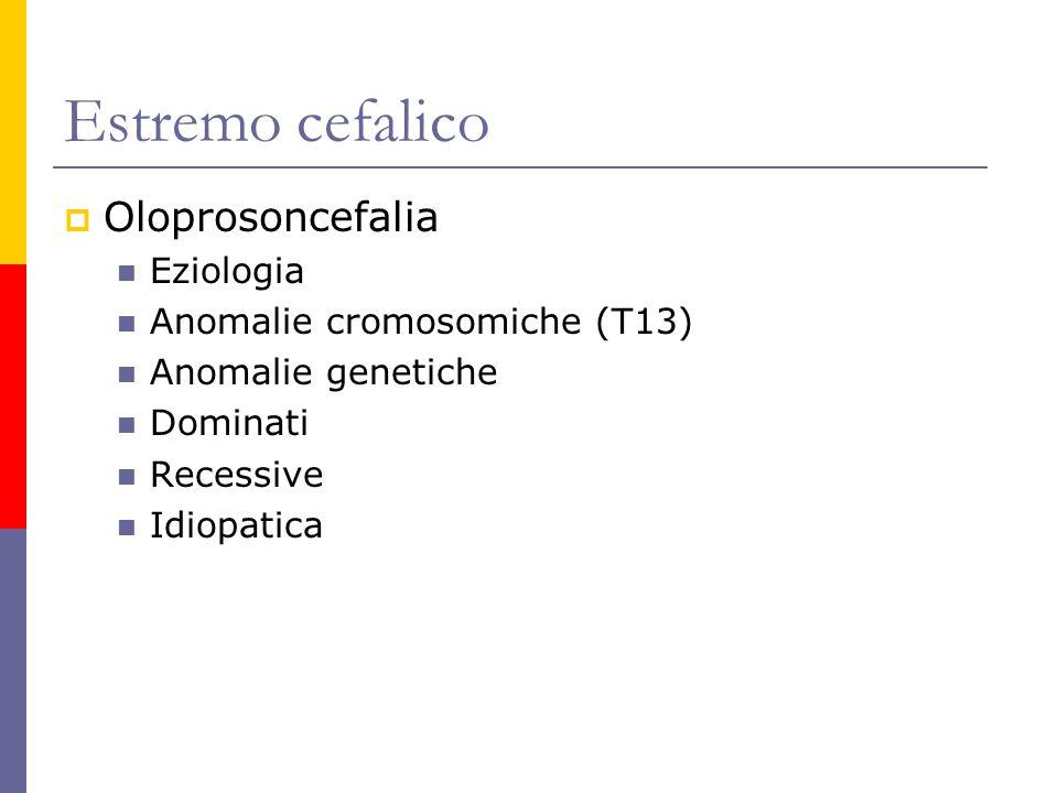 Estremo cefalico Oloprosoncefalia Eziologia Anomalie cromosomiche (T13) Anomalie genetiche Dominati Recessive Idiopatica