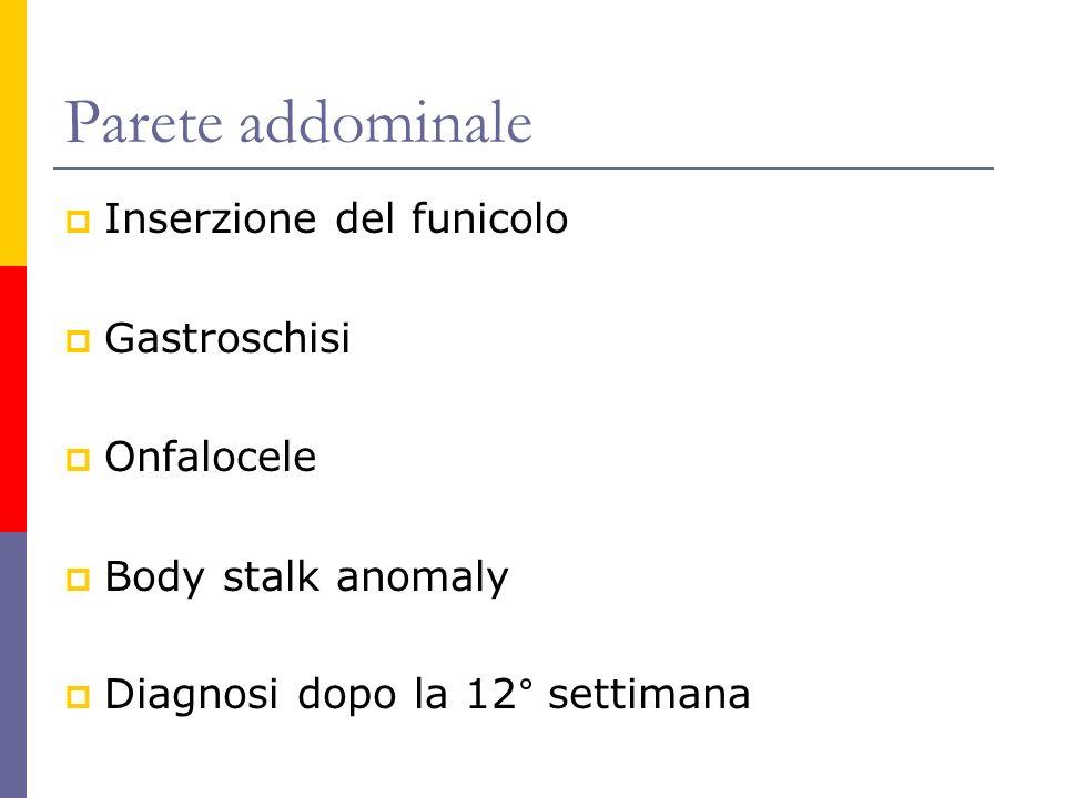 Parete addominale Inserzione del funicolo Gastroschisi Onfalocele Body stalk anomaly Diagnosi dopo la 12° settimana