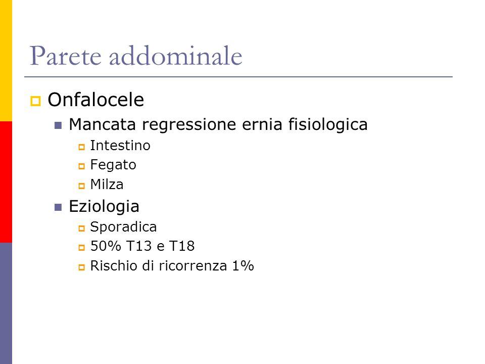 Parete addominale Onfalocele Mancata regressione ernia fisiologica Intestino Fegato Milza Eziologia Sporadica 50% T13 e T18 Rischio di ricorrenza 1%