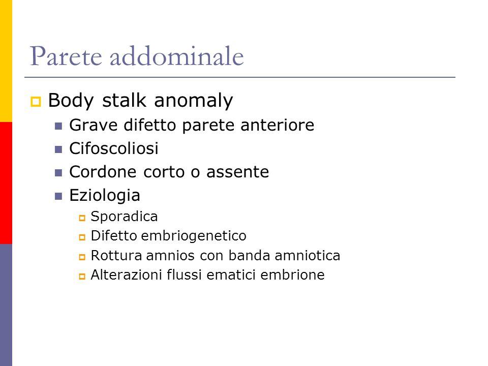 Parete addominale Body stalk anomaly Grave difetto parete anteriore Cifoscoliosi Cordone corto o assente Eziologia Sporadica Difetto embriogenetico Ro