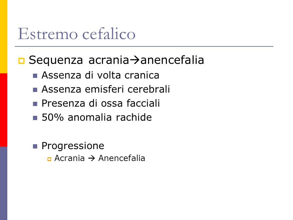 Estremo cefalico Sequenza acrania anencefalia Assenza di volta cranica Assenza emisferi cerebrali Presenza di ossa facciali 50% anomalia rachide Progr